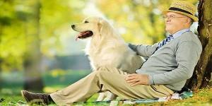 Tumore al polmone, un cane è in gradi di fiutarlo