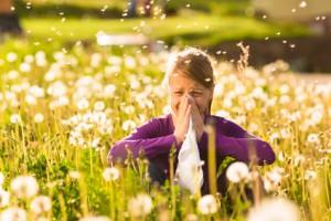 Pollini: italiano scopre meccanismi che provocano allergie