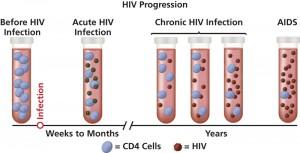 HIV non si arresta in Europa. I dati della 16ª Conferenza europea