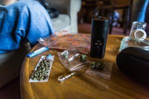Cannabis. Erba sempre più potente. Aumentano rischi. Lo studio
