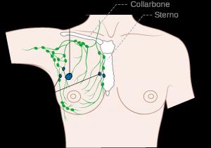 FVG, aumenteranno gli screening sui tumori alla mammella e sul carcinoma all'ovaio