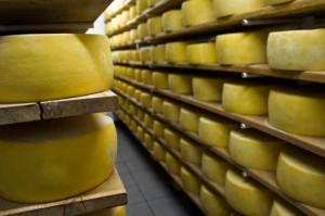Formaggio, un grande business in Italia. Ma sappiamo sceglierli e conservarli?