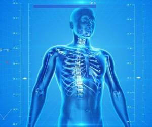 ossa e covid,scheletro