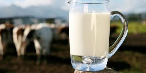 Lattosio, tutti i miti da sfatare sul latte